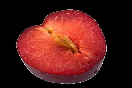 Shop_Fruit